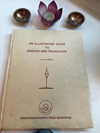 An Illustrated Guide to Asana and Pranayama Image