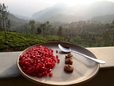 Delicious Mountain Top Clinic Ayurvedic Breakfast, Pomegranate and Figs