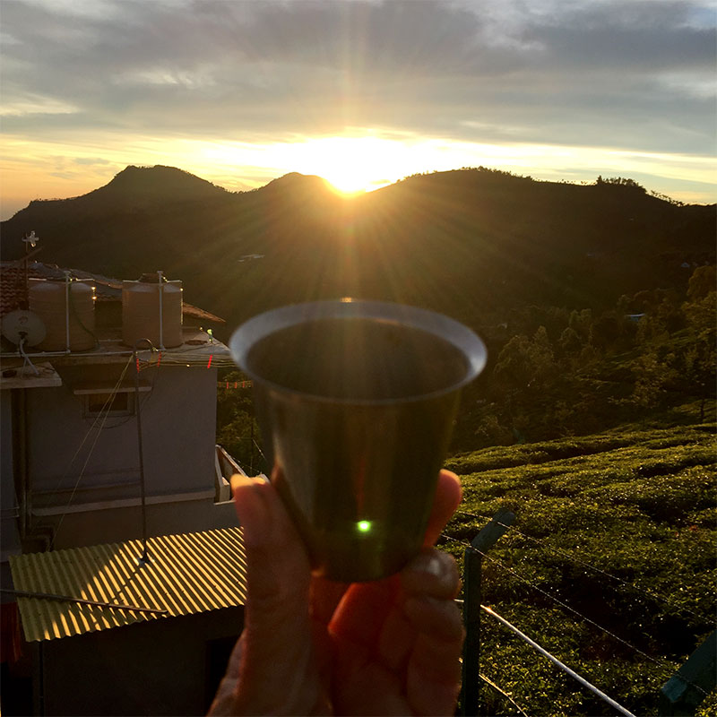 Goblet of Ayurvedic Ghee held towards sunrise