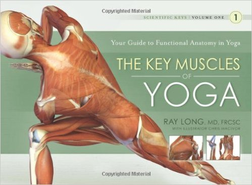 the key muscles of yoga book by ray long